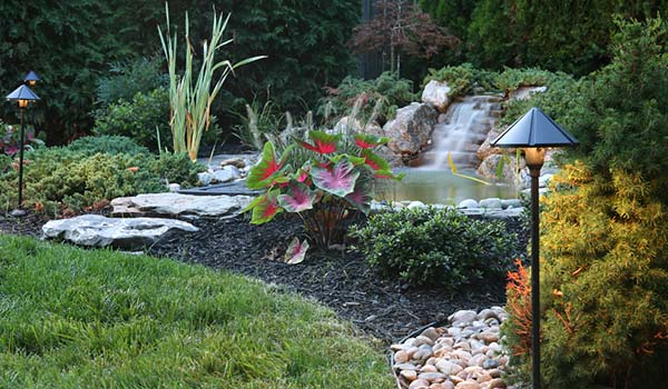 denver sprinkler installation and landscaping