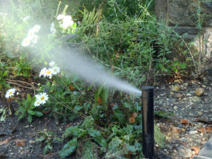 sprinkler blowouts and winterization
